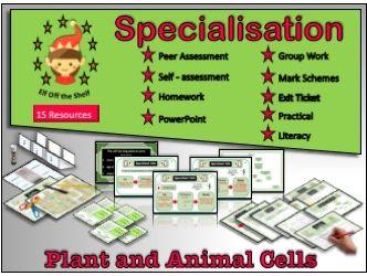 Cell Specialisation KS3