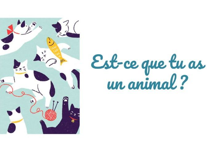 Pets Y7 French