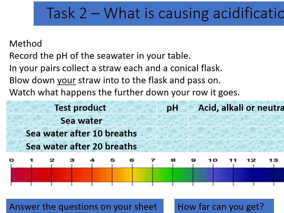 BSW  ocean acidification and density column lessons