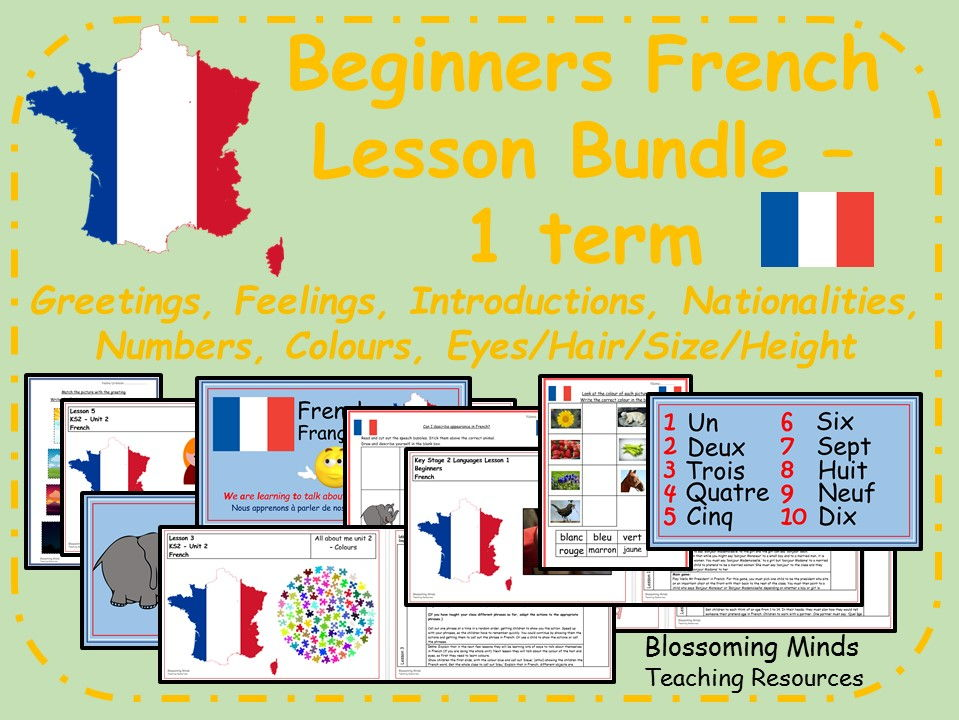 French Lesson Bundle (1 term) Beginners