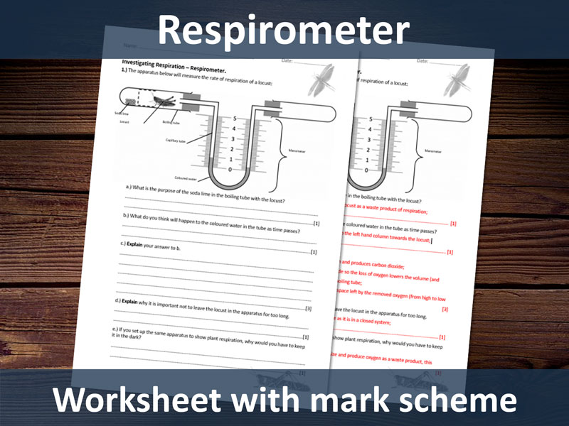 Respirometer Worksheet with Markscheme. Suitable for A-level students - respiration topic.