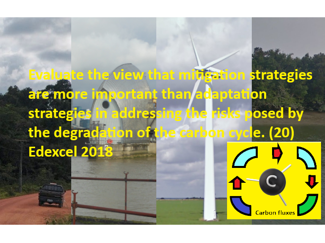 Are mitigation strategies are more important than adaptation strategies?