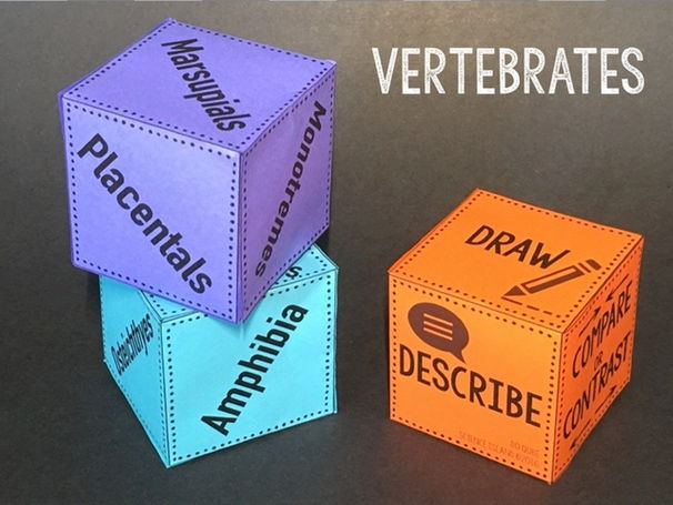 Vertebrates Review Qubes