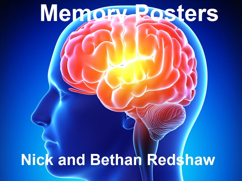 SPECIAL OFFER - Memory - Classroom and Revision Poster Bundle