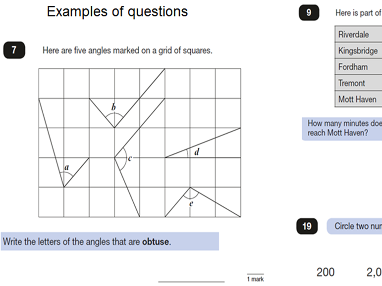 YEAR 6 SATS PAPER 3 REASONING QUESTION PAPER AND ANSWERS. WORD AND PDF. CONDENSED SO LESS PRINTING.