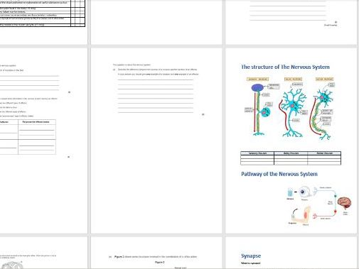 Homeostasis student booklet - Notes/EQs