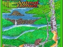 """Animal Homes"" Art & Nature Science Unit"