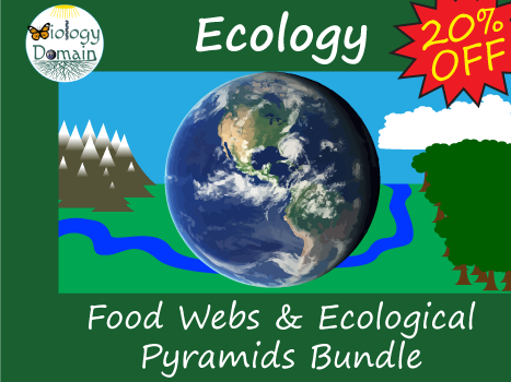 Ecology: Food Webs and Ecological Pyramids Bundle