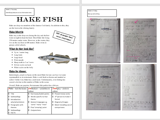 Everything you need for Non-Chronological Report about Fish Talk for Writing Style