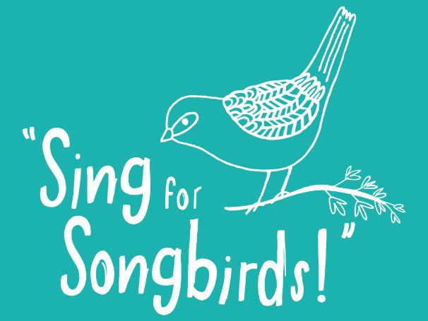 Learn at Chester Zoo - Sing for Songbirds Singalong