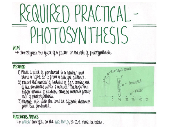 RP - Photosynthesis (Bioenergetics) Revision Poster [AQA GCSE Biology Double and Triple 9-1]