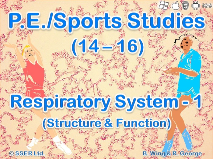 PE15ST - Respiratory System - 1 (Structure & Function)