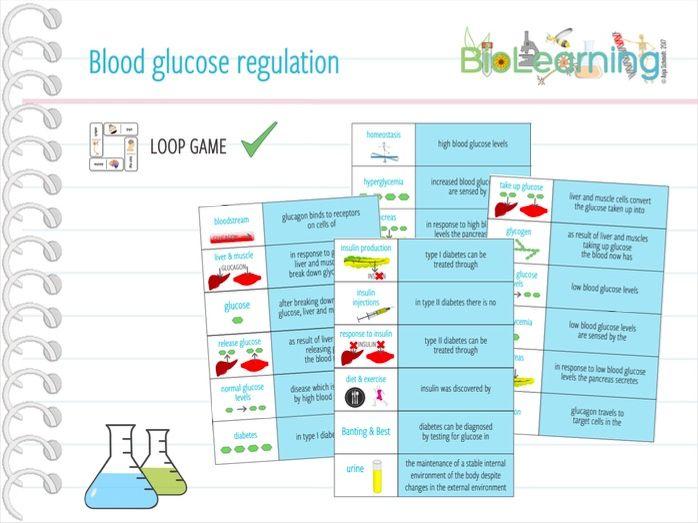 Blood glucose regulation - Loop Game (KS4)