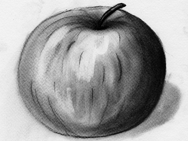 Art - Introduction to Charcoal (Two Lessons)