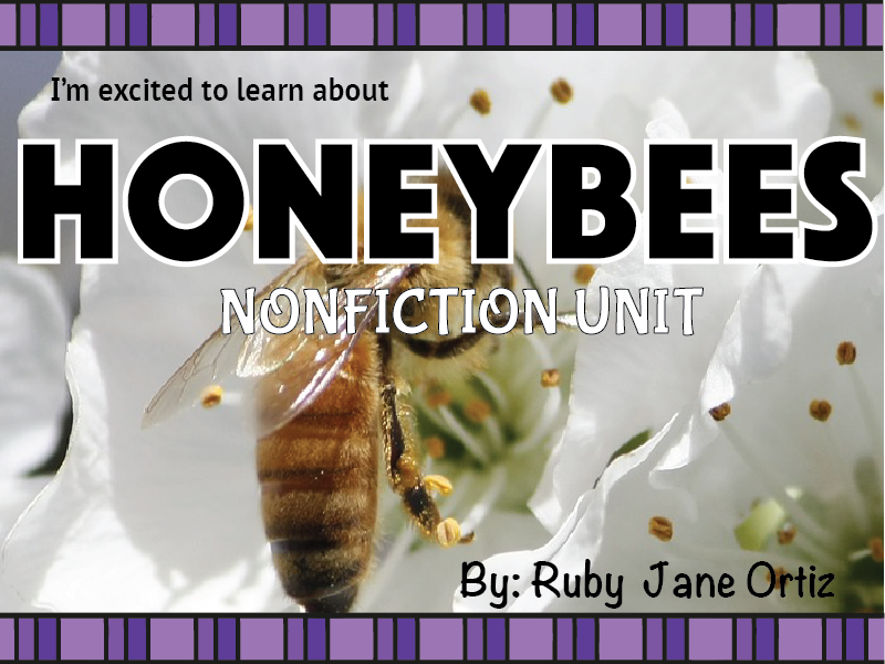 Honeybee Nonfiction Unit