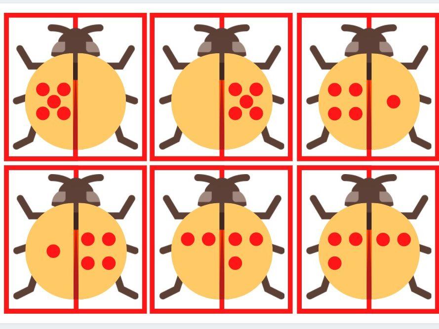 Ladybird matching cards