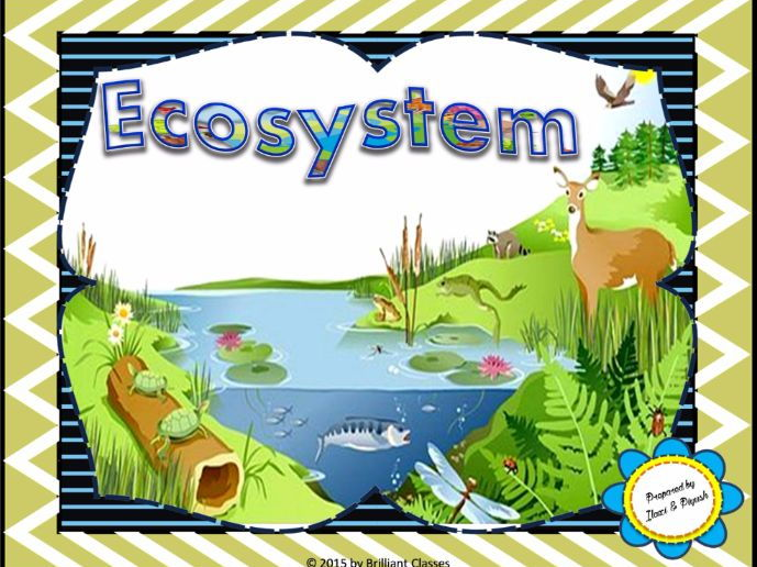 Ecosystem: Unit Plan with Worksheets