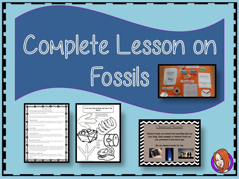 Understanding Fossils Complete STEAM Lesson