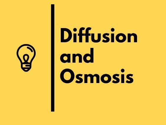 Diffusion and Osmosis - IGCSE Biology Revision Notes
