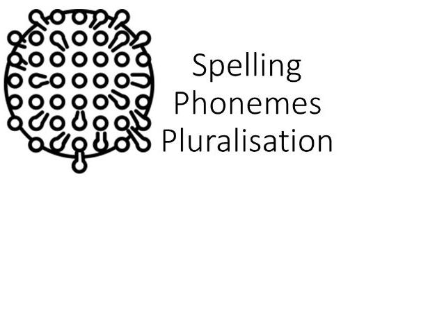 Spelling Pluralisation Phonemes KO Knowledge Organiser literacy support