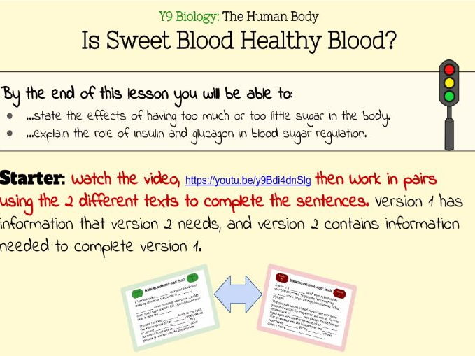 Blood Sugar and Diabetes (2 lessons with Printables)