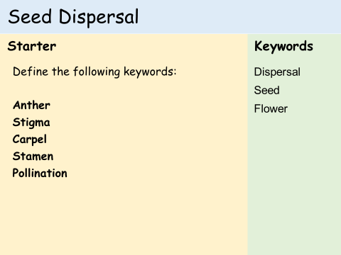KS3 Plants - Lesson 5 - Seed Dispersal