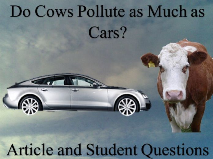Do Cows Pollute As Much As Cars? Article and Student Questions