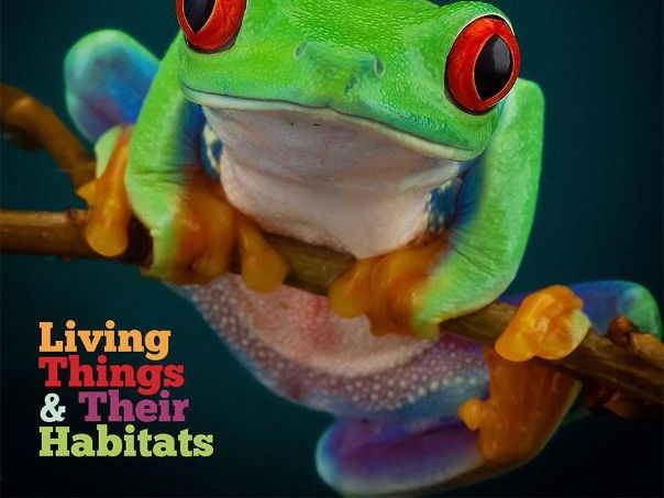Year 4 Science MTP– Living Things and their Habitats
