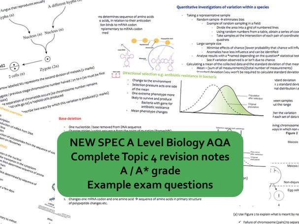 NEW AS Biology AQA Topic 4 GENETIC INFO, VARIATION & RELATIONSHIPS BETWEEN ORGANISMS revision book