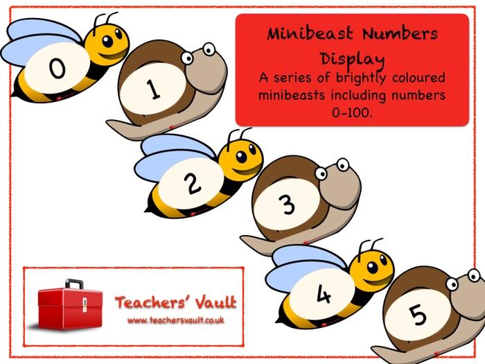 Minibeast Numbers Display