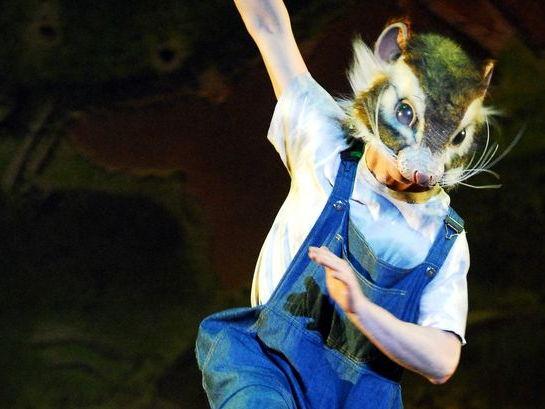 DANCE KS3 PLAYFUL BANTER - Still Life at the Penguin Cafe Task Sheets