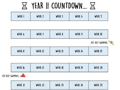 Year 11 countdown....   Add some urgency!