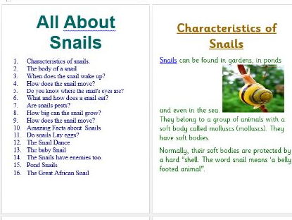 Year 2 Information Text All About Garden Snails
