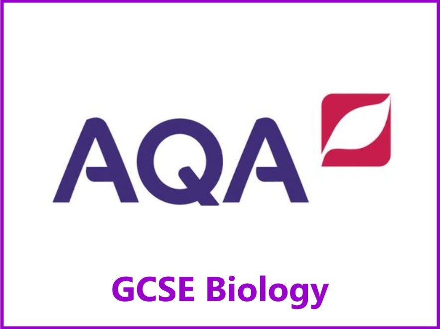 AQA Biology GCSE Grades 4, 6 & 8 Revision Checklists Papers One & Two
