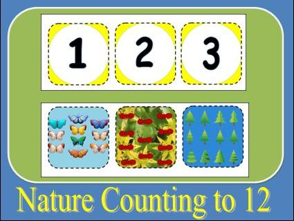 Nature Counting to 12 Activity