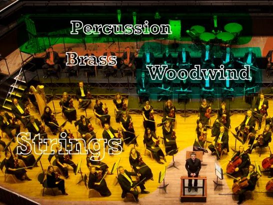 Instruments of the Orchestra (Movies)