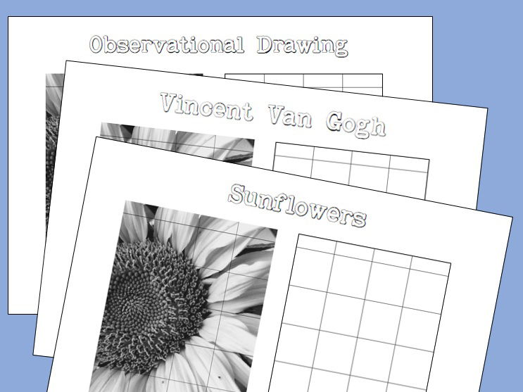 Sunflower Grid Drawing - Suitable for Van Gogh Projects
