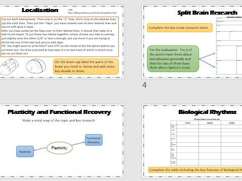 Biopsychology Revision Carousel Activity Lesson - AQA Psychology new spec.