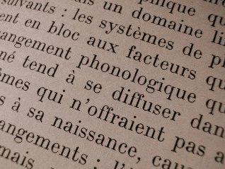 L'environnement French language GCSE sentences and vocabulary - revision sheet