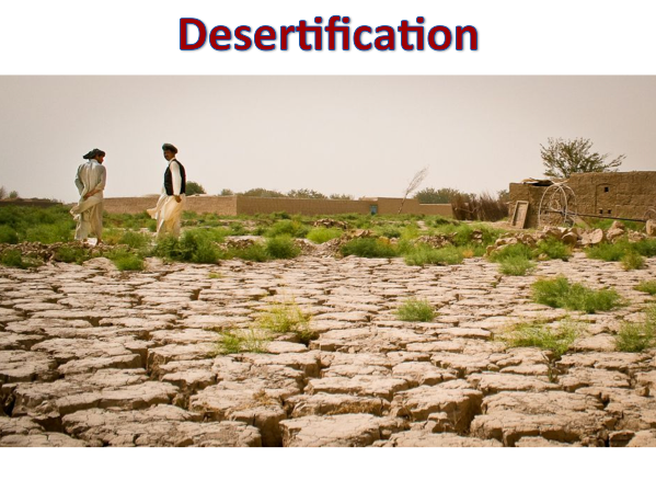 KS3 Deserts - Desertification