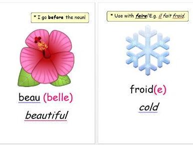 Emoji Adjectives Display (French)