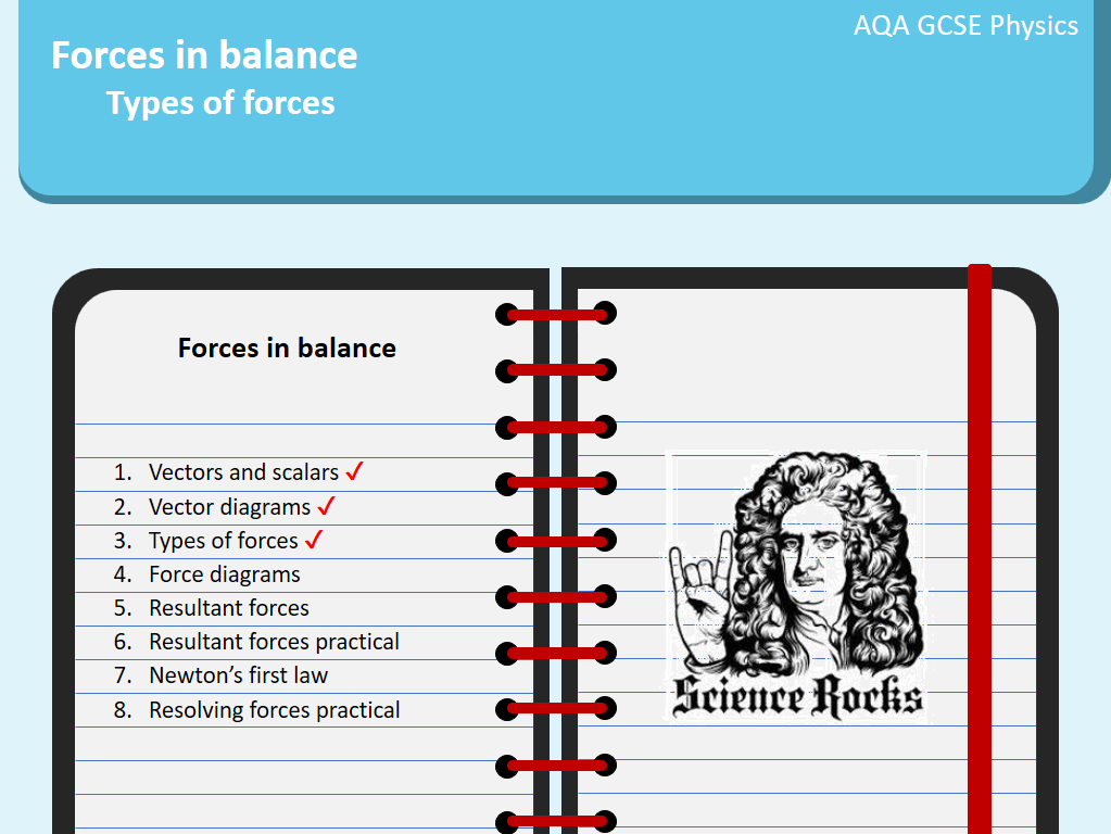 Forces in balance: Newton's laws, types of forces, forces diagrams, vector and  scalar