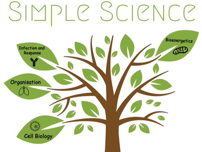 GCSE Biology Interactive Revision Tree - Paper 1 (AQA)
