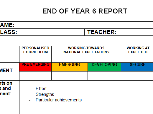 pupil report template
