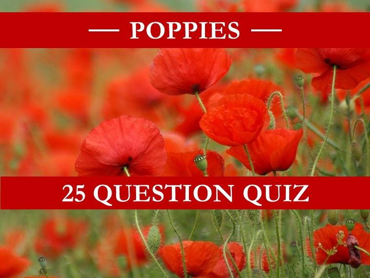 Poppies Quiz