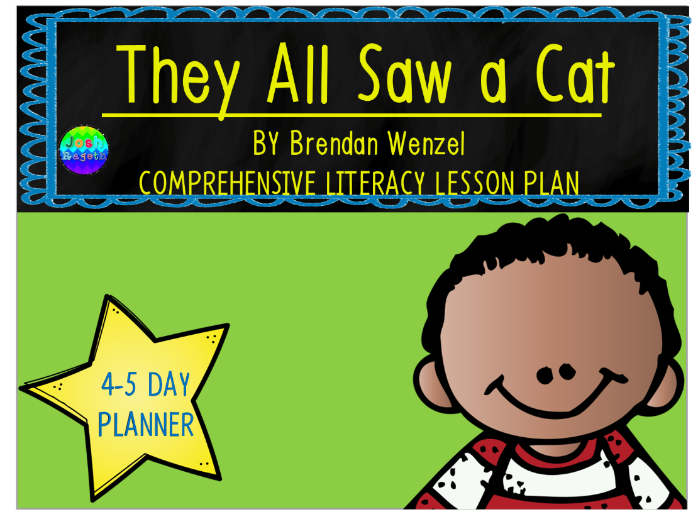 They All Saw a Cat by Brendan Wenzel 4-5 Day Lesson Plan and Activities