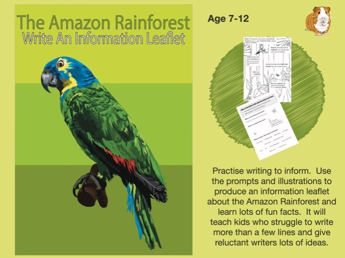 Write An Information Leaflet About The Amazon Rainforest (7-13 years)