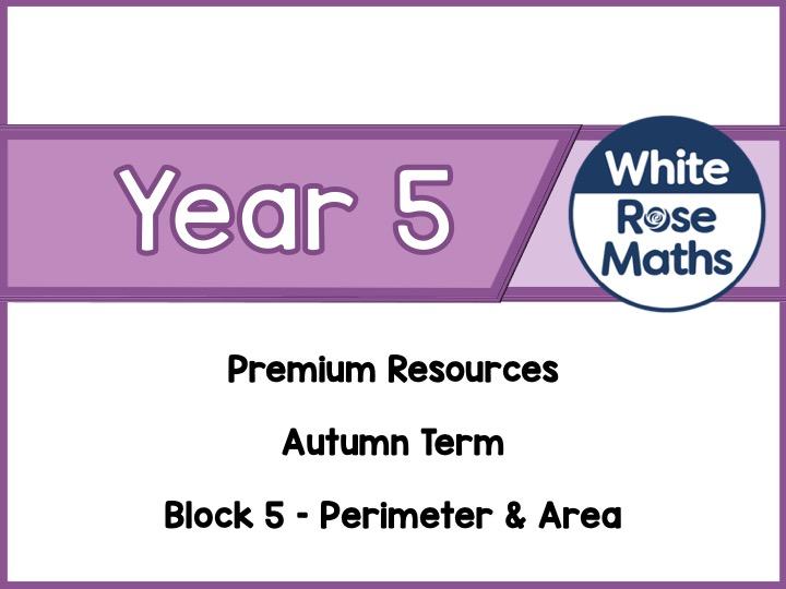Year 5 - Perimeter & Area