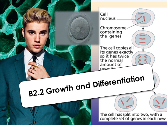 GCSE Growth and Differentiation (AQA B2.2)
