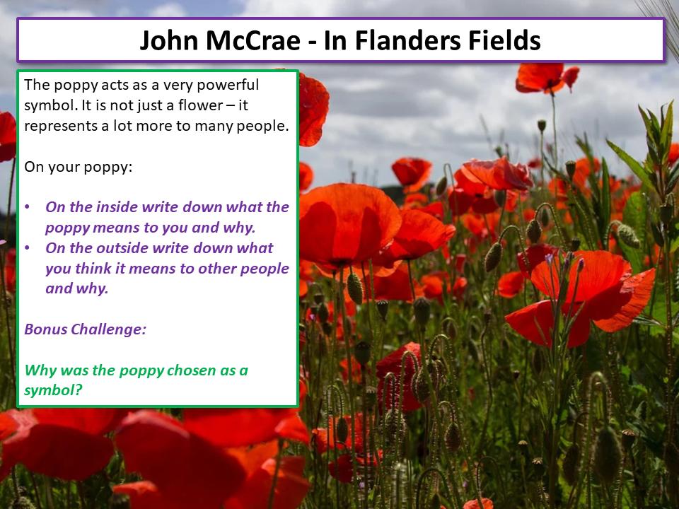 War Poetry In Flanders Fields